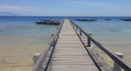 Pemuteran in Indonesien