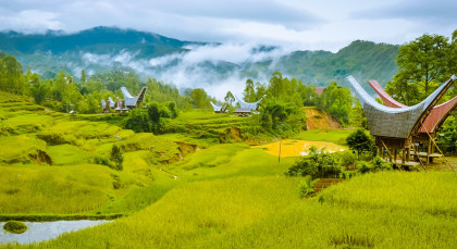 Destination Toraja in Indonesia
