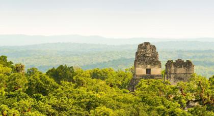 Tikal Nationalpark in Guatemala