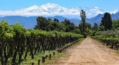 Destination Mendoza in Argentina
