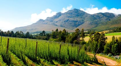 Destination George in South Africa