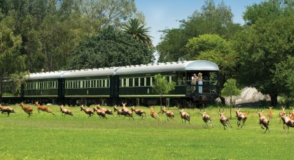 Destination Rovos Rail (Cape Town – Pretoria) in South Africa