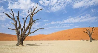 Namibia Rundreisen in Afrika