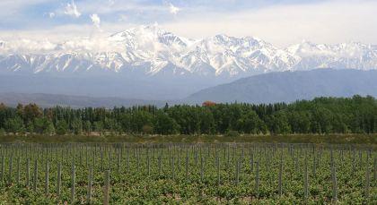 Reiseziel Mendoza in Argentinien