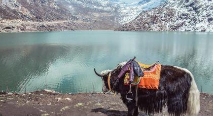 Reiseziel Gangtok in Ostindien