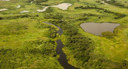 Destination Pantanal North in Brazil