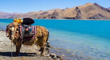 Tibet in Asien