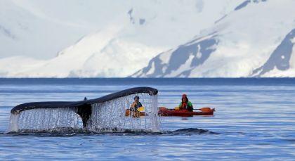 Antarktis in