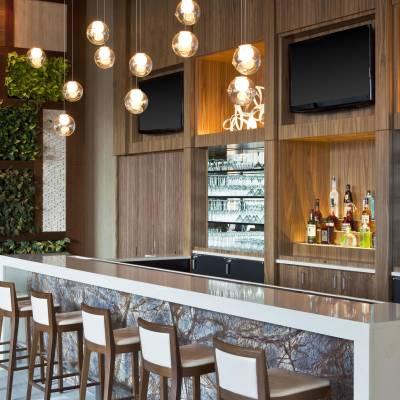 Lobby Bar and Vertical Garden