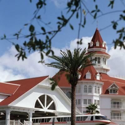 a tree in front of a house with Disney's Grand Floridian Resort & Spa in the background