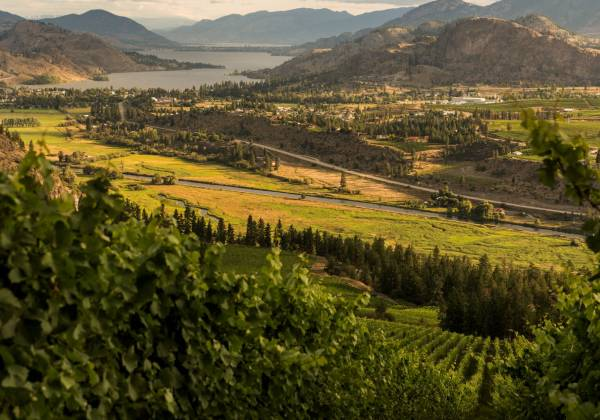 View to Skaha Lake from See Ya Later Ranch Winery