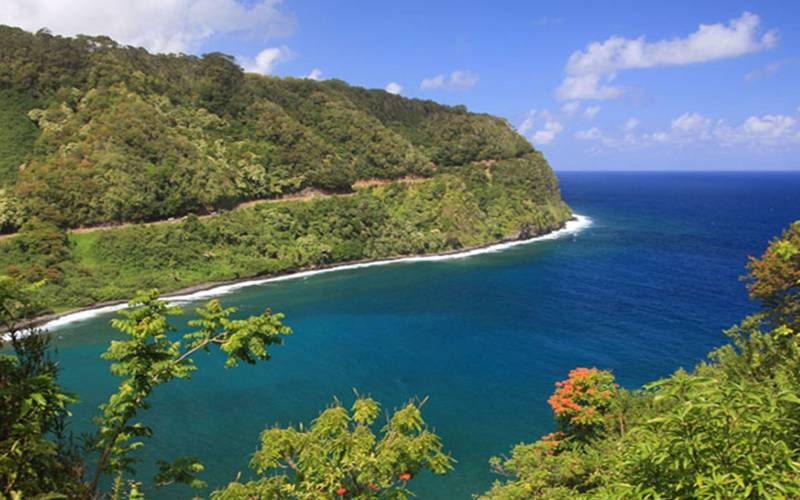 an island in the middle of a body of water surrounded by trees with Hana Highway in the background