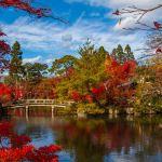 Enchanting Travels Japan Tours Kyoto