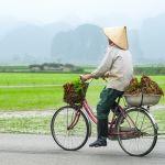 Cambodia Vacation