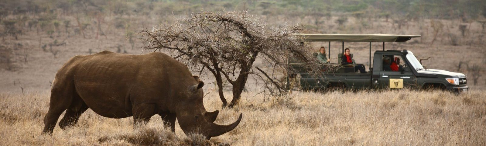Top 10 Things To Do in Kenya - wildlife safari in Lewa
