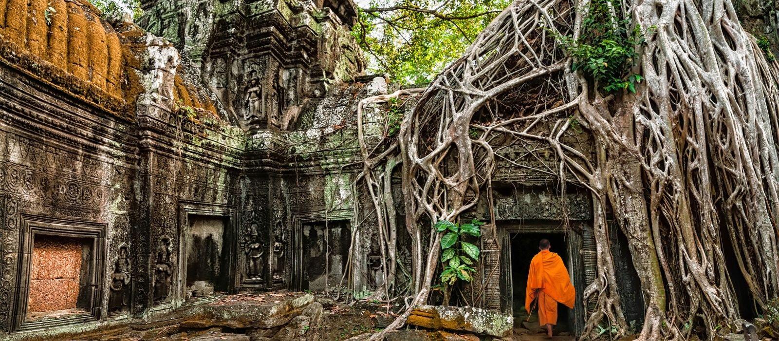 Spektakuläre Tempelbauten im Dschungel