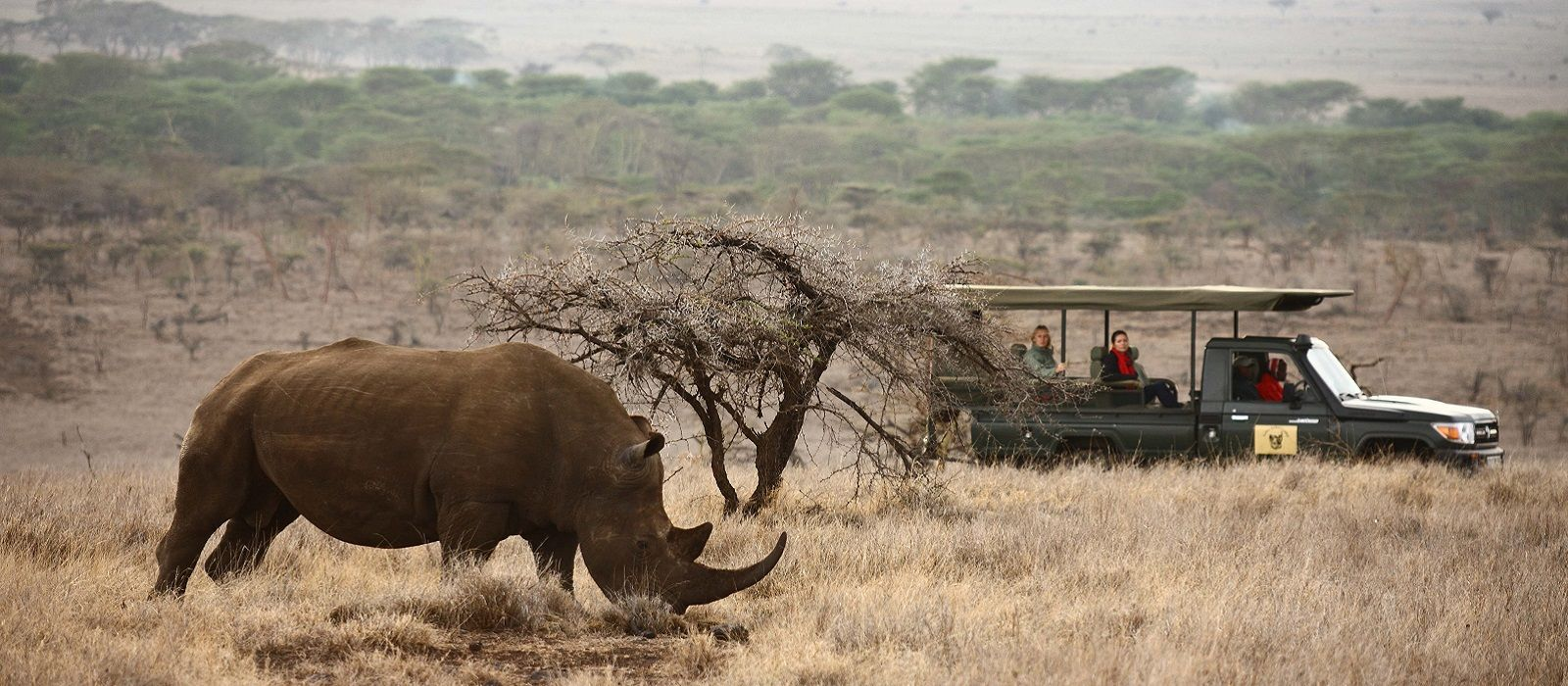 Enchanting Travels - Kenya Tours - Laikipia - Lewa Safari Camp - Wildlife Game Drive White Rhino
