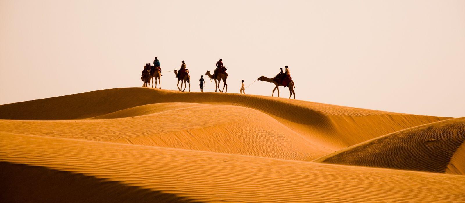 Camel safari tour in Rajasthan, India.