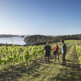 Enchanting Travels New Zealand tours Bay-Of-Islands-Northland-Alistair-Guthrie