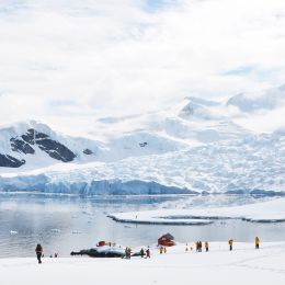 adventure expidition Antarctica