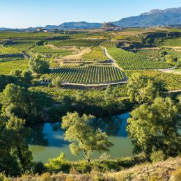 Things to do in Spain - La Rioja