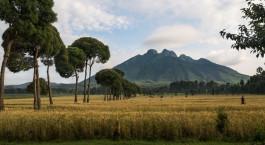 Is Rwanda safe? Beautiful scenery in Rwanda