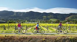 Enchanting Travels New Zealand Tours Nelson