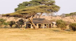 Hotel-Tanzania-Serengeti-Central-Namiri-Plains