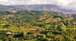 Enchanting Travels Colombia Tours Coffee Region