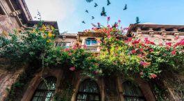 Enchanting Travels India Tours Jodhpur Hotels Ranbanka Palace Facade