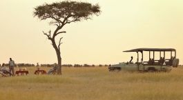 Game drive in Serengeti (Southern), Tanzania