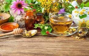 Herbal Kit, Expert Travel Advice