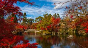 Enchanting Travels Japan Tours Kyoto