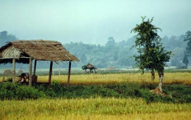 Naturparadies Hsipaw in Myanmar