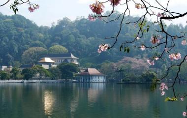 Das spirituelle Städtchen Kandy