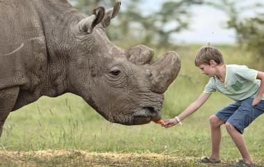 Enchanting Travels Kenya Tours