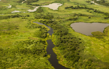 Aerial view of Pantanal wetlands, Pantanal, Brazil South America Enchanting Travels