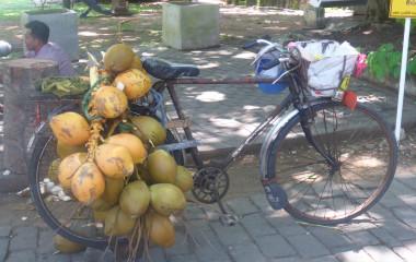 Ein altes, mit Früchten beladenes Fahrrad in Sri Lanka