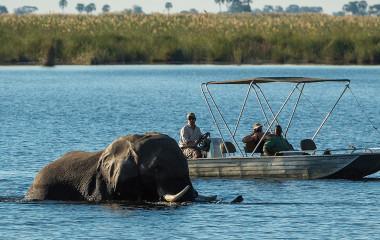 Linyati Wildlife Reserve Dumatau Camp, Okavango Delta, Botswana Tours, Africa