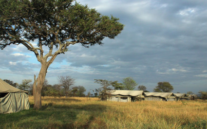 Exterior view of camp tents at Serengeti North Wilderness Camp in Northern Serengeti, Tanzania