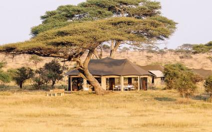 Safari-Zelt unter Bäumen