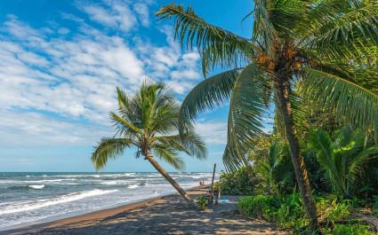 Wild beach at Tortuguero