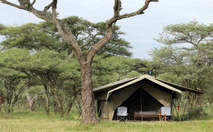 Exterior view of guest tent at Serengeti North Wilderness Camp in Northern Serengeti, Tanzania