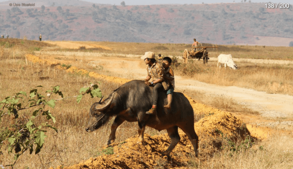 Myanmar Reisebericht - Kinder beim Spielen