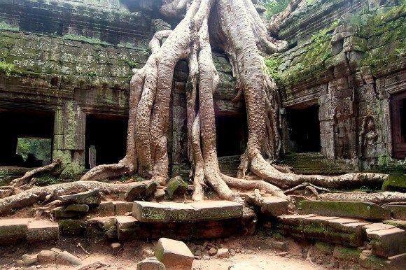 DerTa Prohm Tempel