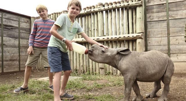 Baby rhino in Ol Pejeta