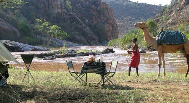 Kenya Laikipia - Camel Trek (1)