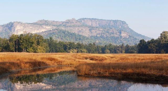 Indischer Dschungel: Weite, offene Graslandschaft in Indien mit Gebirge im Hintergrund