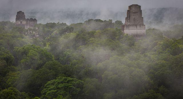 The magnificent ruins of Tikal peeking through the mist