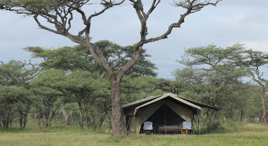 Großes Safarizelt in der Wildnis der Serengeti